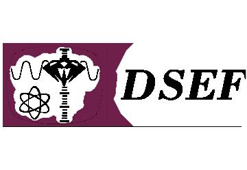 Logo von DSEF.